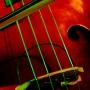 Międzynarodowy Festiwal Muzyka Epok w Dusznikach Zdroju